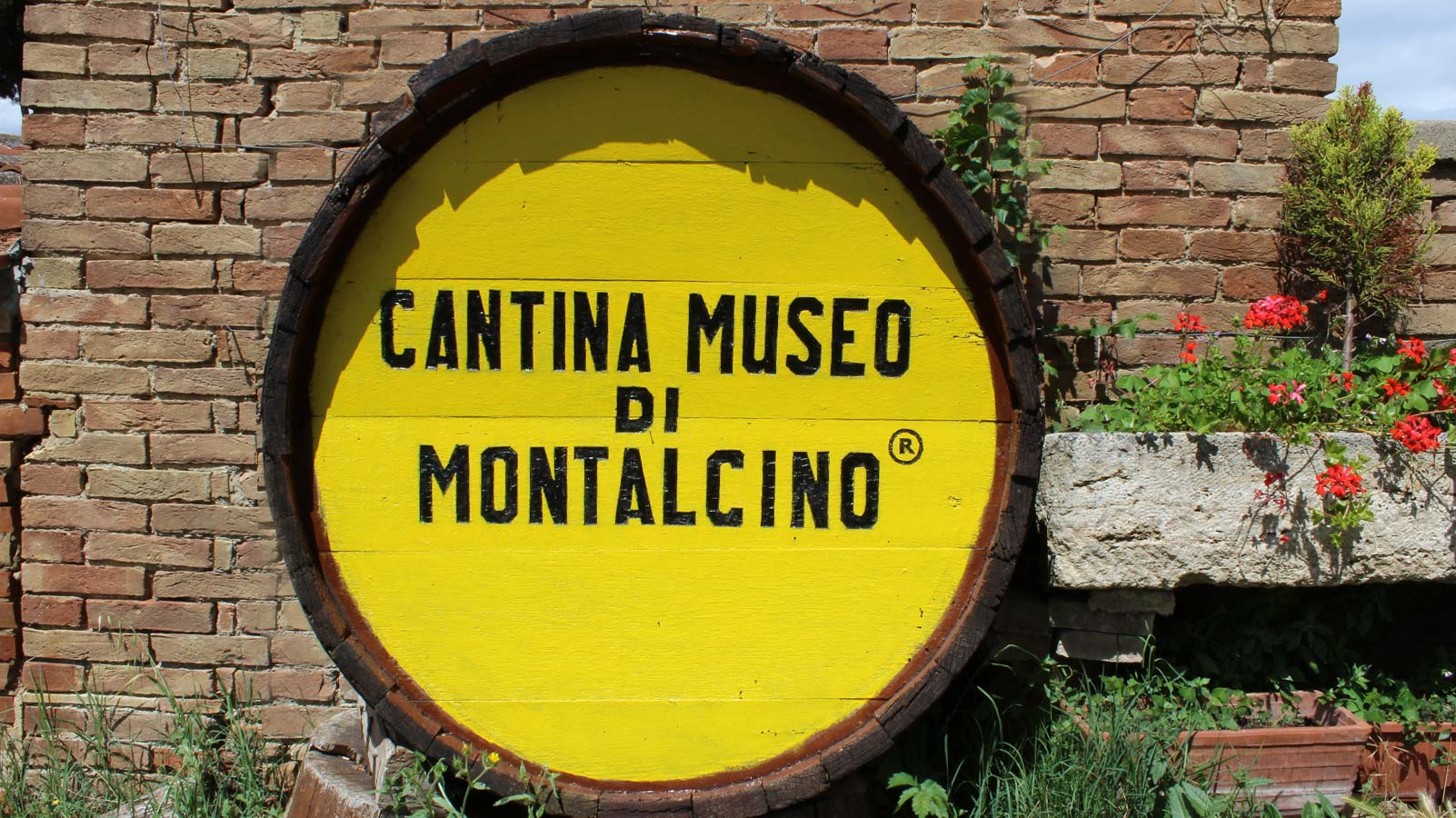 Botte-Cantina-Museo1